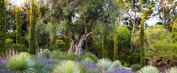 jardin_priv2